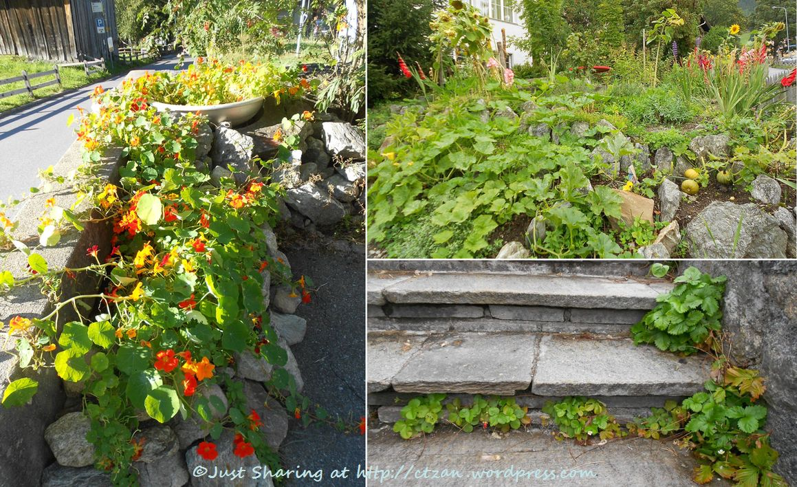 Klosters get away just sharing for Vegetable patch