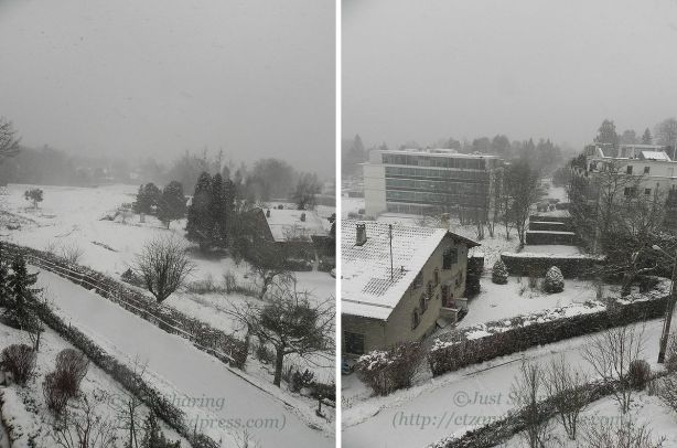Another snowy morning, Lausanne - Vennes,7 December 2012