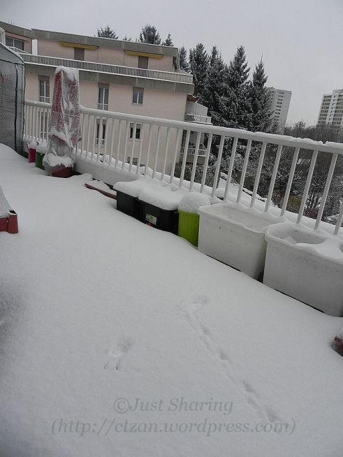 Snow filling up our balcony, 7 December 2012