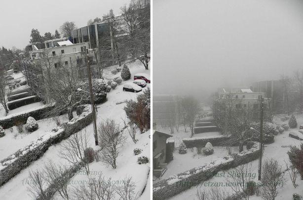 Snow and mist,Lausanne - Vennes, 7 December 2012