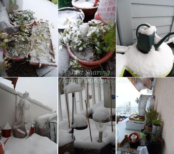 First snowfall,